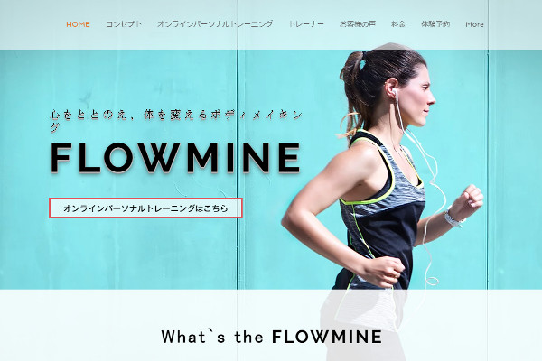 FLOW MINE